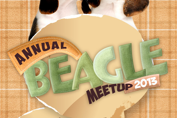 beagle_big
